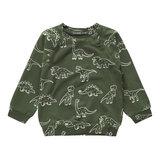 Your Wishes sweatshirt dinosaurs _