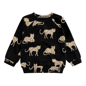Your Wishes sweater wild cheetahs