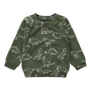 Your Wishes sweatshirt dinosaurs